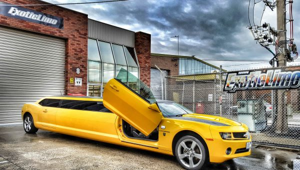 Bumblebee 10 Seater Limo