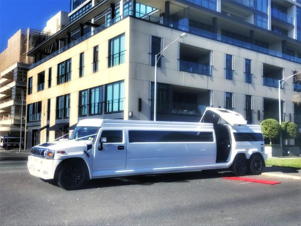 The White Lion Super Sized Hummer